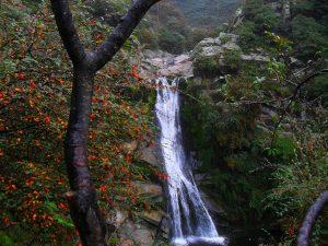 Rancho Pampa - Naturaleza en La Cumbrecita